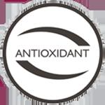 Rico em antioxidantes